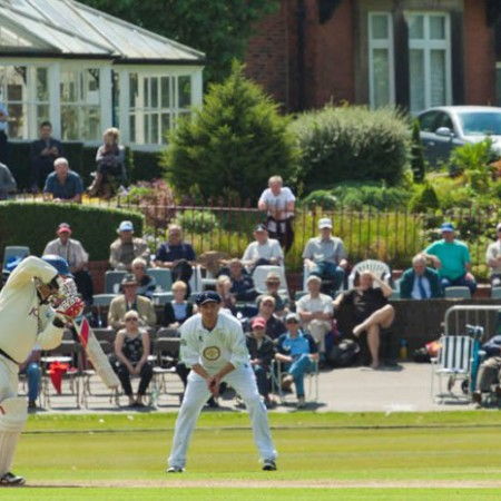 Chesterfield Events - Festival of Cricket